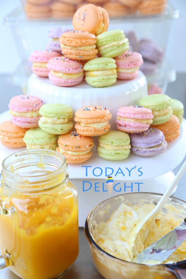 french macarons is Today's Delight