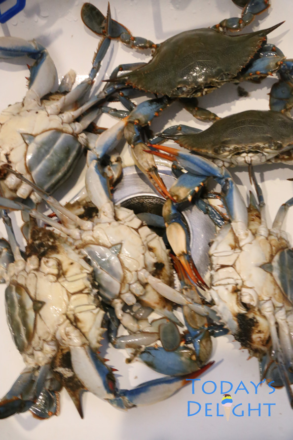 cleaning blue crabs is Today's Delight