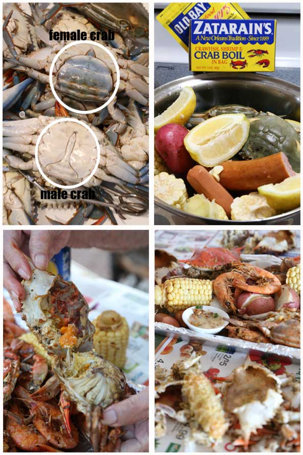blue crab boil recipe is Today's Delight
