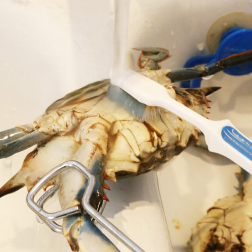 how to clean blue crab is Today's Delight topic